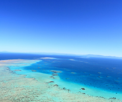 Coal port dredging, dumping threat to Great Barrier Reef