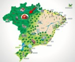 Brazil Map with hard hat 333
