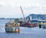 Canada's coal port expansion plans anger activists