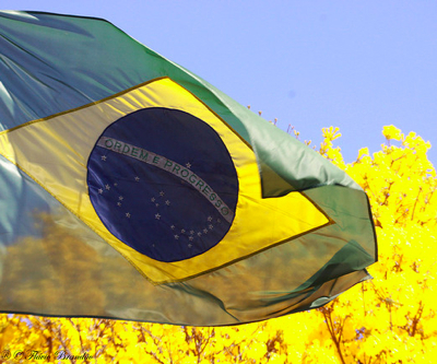 Brazil doubles gold reserve to highest level in 12 years
