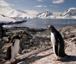 It's getting warm in Antarctica, but mining still a pipe dream