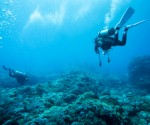 Japan to subsidize underwater rare earth venture
