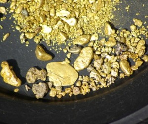 Pfizer lab missing $700K of gold dust