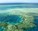 Marine experts demand Australia to stop reef mine, ports plans