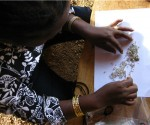 KP experts examine diamonds in Cameroon