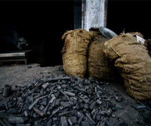 Coal in the streets of New Delhi, India
