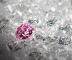 Rio's multi-million-dollar Argyle pink diamonds hit Tokyo