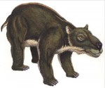 Artist impression of the Diprotodon (photo credit Queensland gov.)