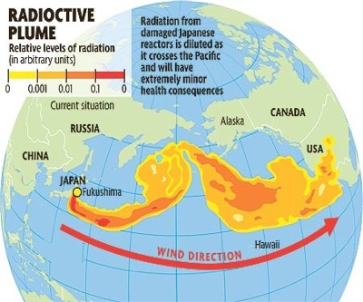 Fukushima nuclear radiation found in Canada's coast raises fears
