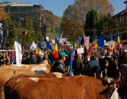 Romania protests continue