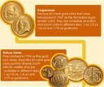 south african gold coins infographic