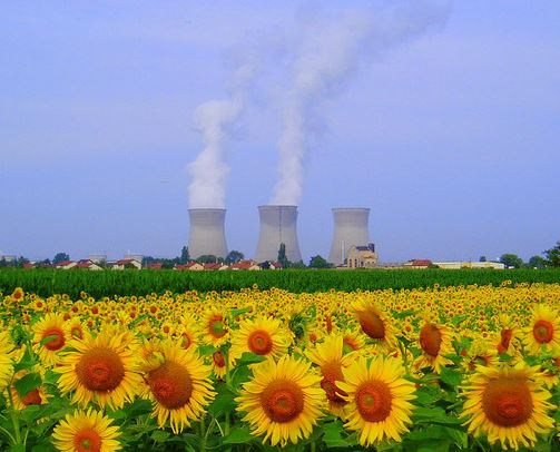 Climate scientists call for nuclear energy
