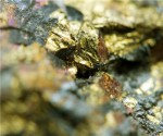 A dozen gold, copper, phosphate and uranium standouts