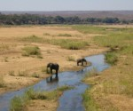 South Africa charges mining firm that polluted river at national park