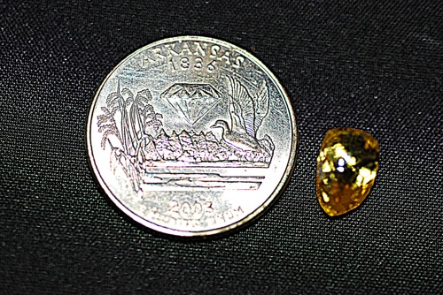 American girl gets $20K for diamond found in park