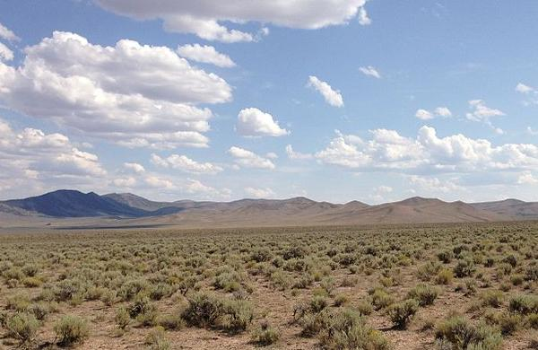 Pilot Gold highlights strong drill results in Nevada