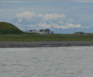 bristol bay flickr feat