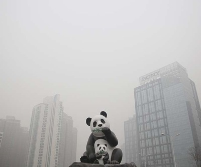 Chinese coal burning set to decline first time in 14 years