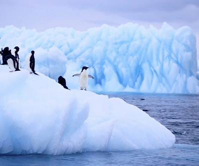Mining the Antarctic a big no-no