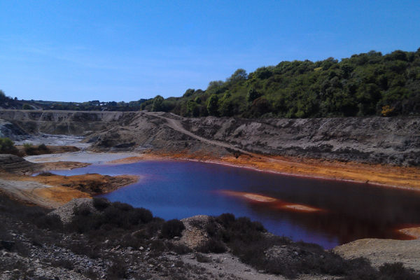 Scientists test algae to harvest precious metals and biofuel from mining sludge