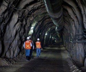 Goldcorp axes dividend