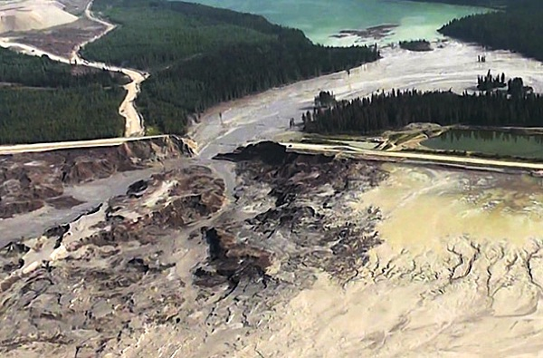 Mount Polley mining disaster cause major changes to ecosystem — study