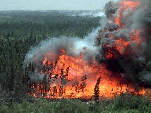 Wildfire spreads closer to Canada's oil sands: hundreds evacuated