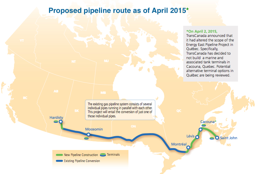 New study says Energy East Pipeline would hurt whales