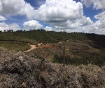 Earthworks construction begins at the San Ramon gold mine. Image courtesy of Red Eagle Mining.