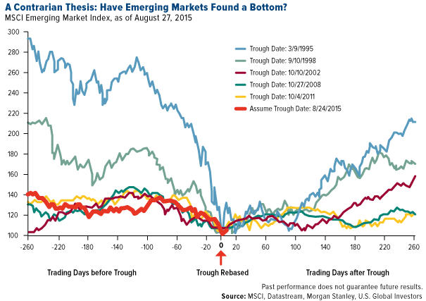 A contrarien thesis - have emerging markets found a bottom - graph