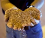African Potash signs supply deal with Zambia distributor
