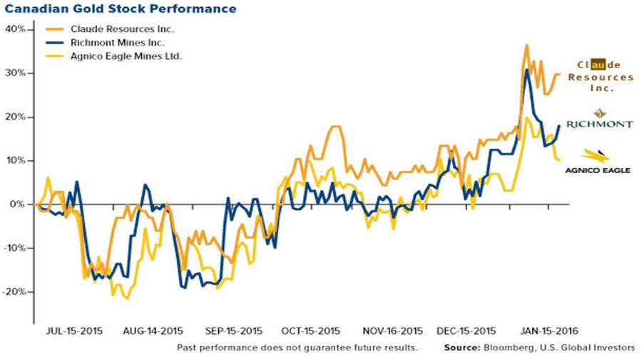 Canadian Gold Stock Performance graph