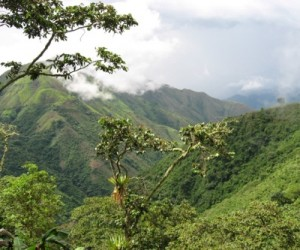 Colombian police begins evicting illegal miners from Continental Gold's claims