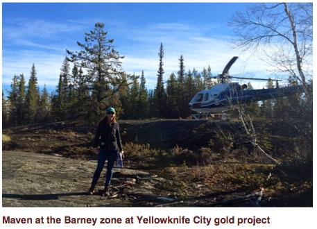 Maven at the Barney zone at Yellowknife City gold project