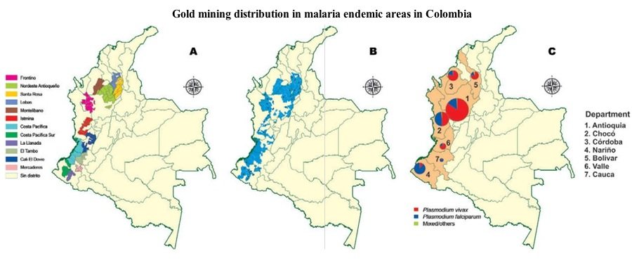 Cases of malaria on the rise in Colombia's mining regions, study shows