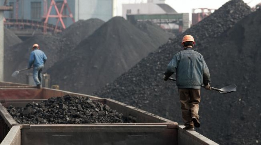 "Iron ore price plunges, ""panic"" selling of coking coal"