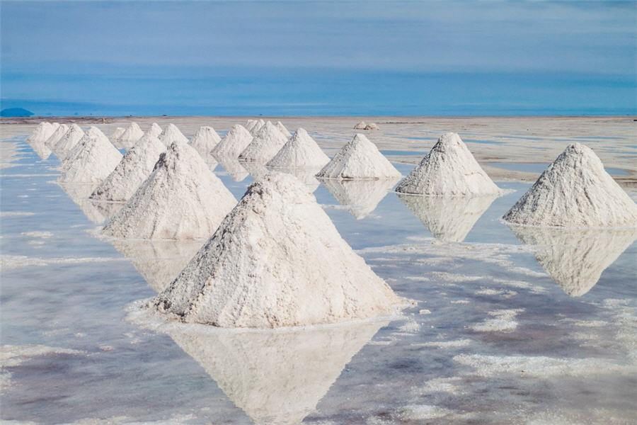lithium x is not alone u2014profiling this marketplace darling