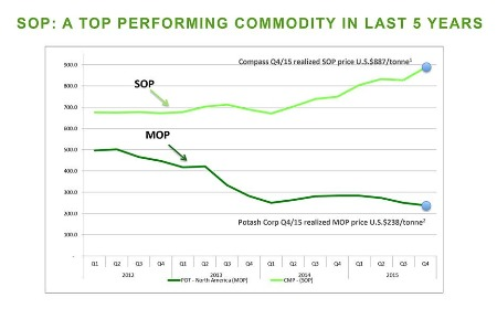 Potash price surge could lead to higher food costs for billions - a top performing commodity in last 5 years graph