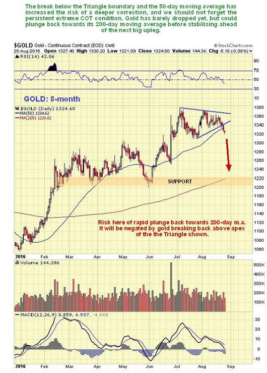 Gold Hedgers Chart