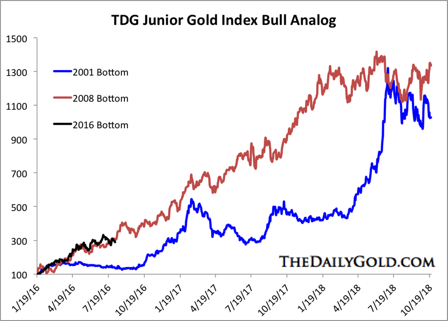 Gold and gold stocks bull analogs - TDG Junior Gold Index