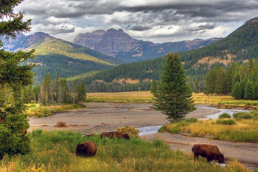 US to ban mining near Yellowstone national park