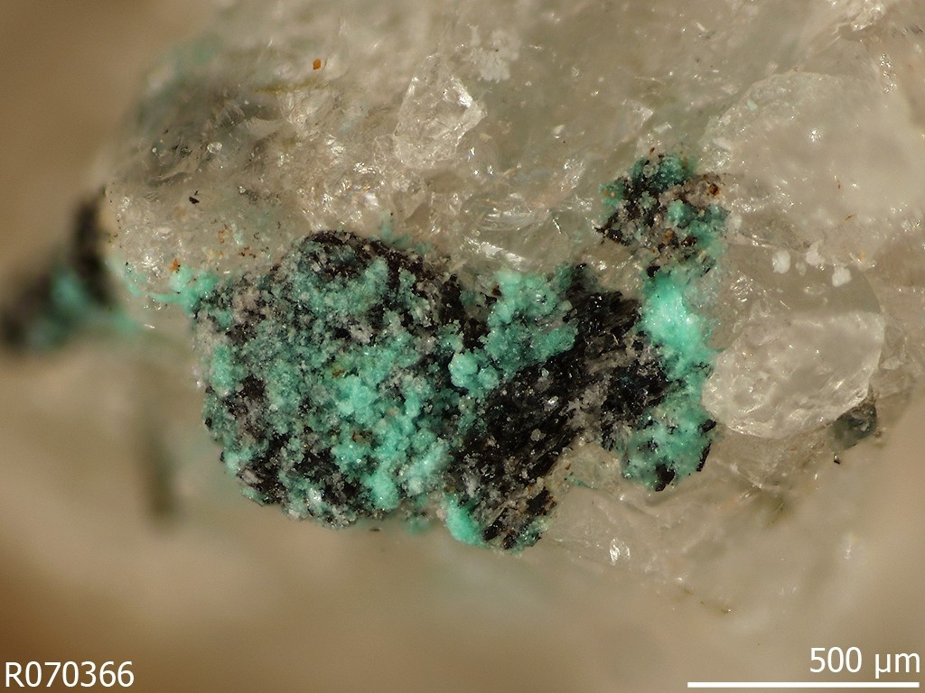 Human activity created 208 new mineral species - Chalconatronite