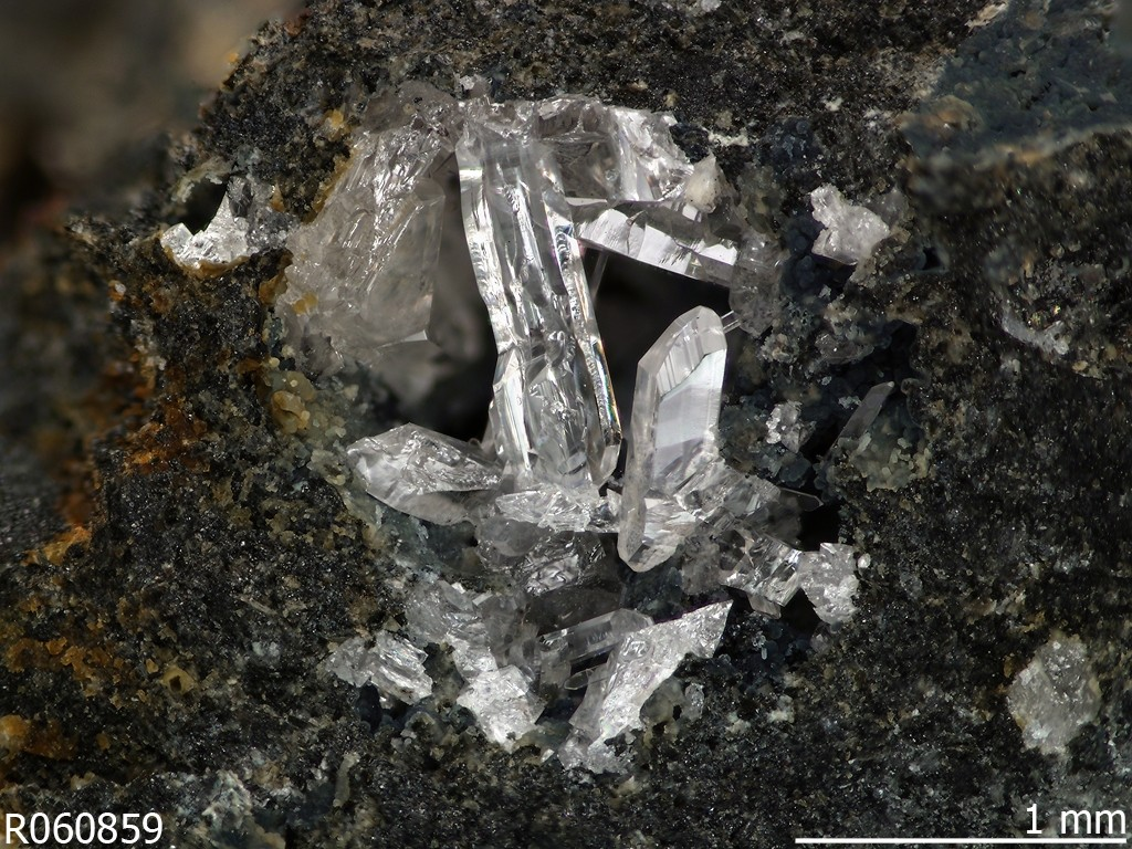 Human activity created 208 new mineral species - Fiedlerite