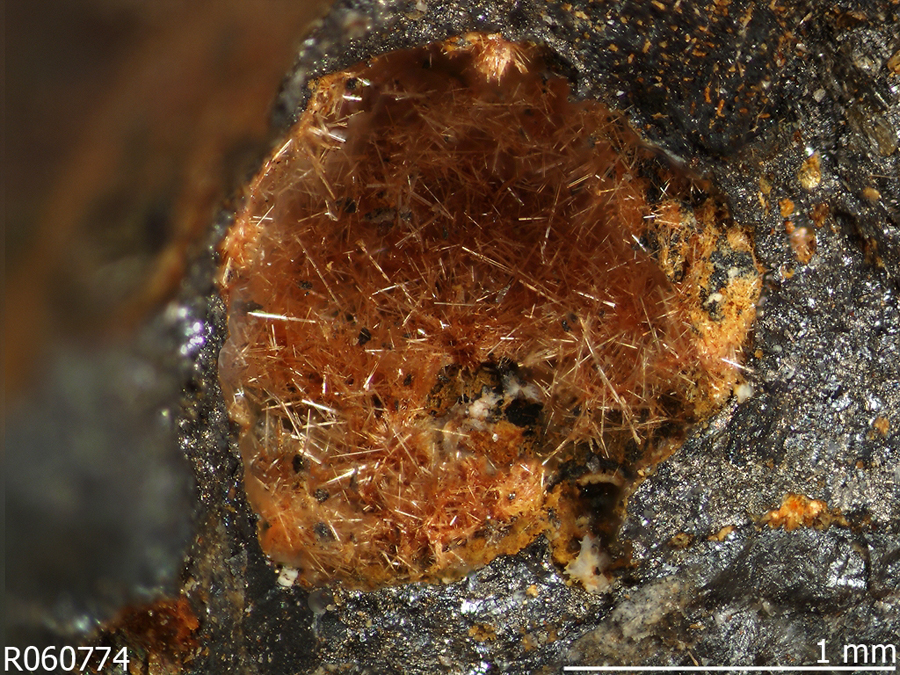 Human activity created 208 new mineral species - Nealite