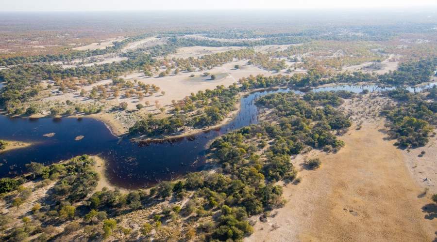 The 22000 square-kilometer Okavango delta is one of the world's largest inland deltas