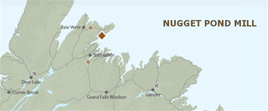 Newfoundlands champion moves towards gold production - the Nugget Pond