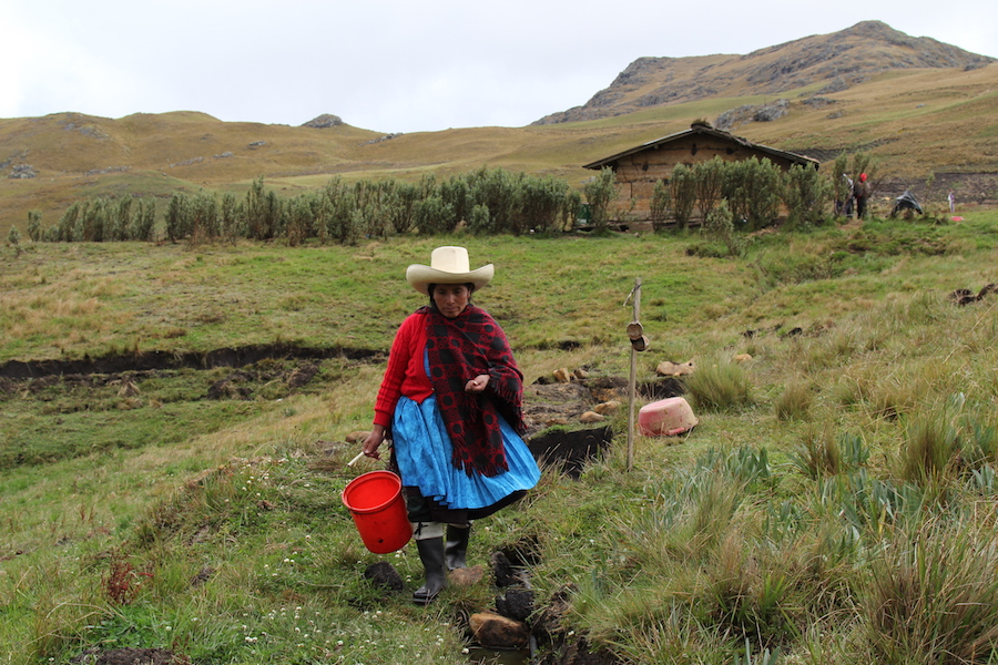 Peruvian farmer sues Newmont in US court over alleged use of violence and threats