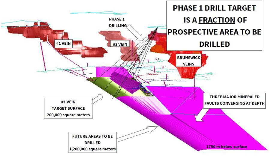 A tiny junior targeting 1-3 Moz high-grade gold - drill target and prospective area to be drilled