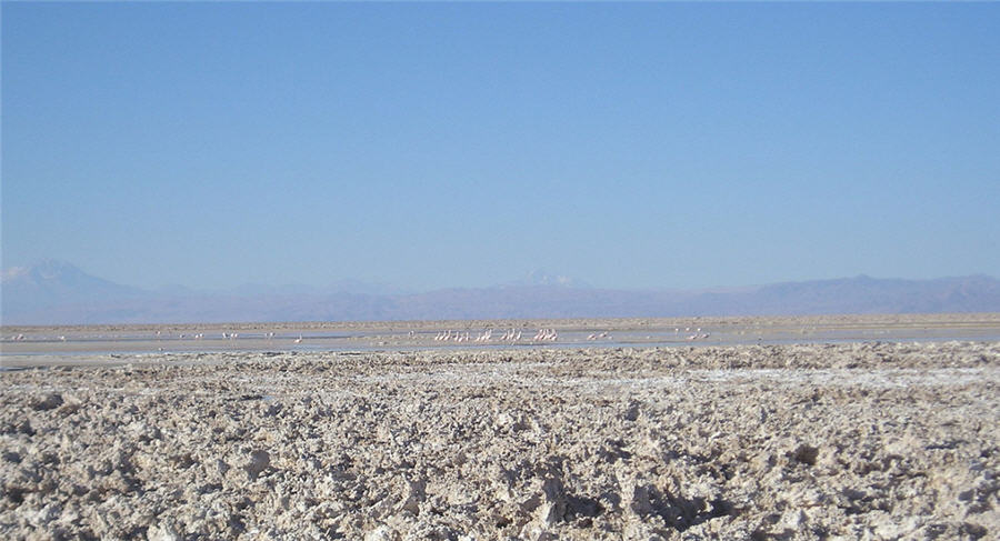 Chile judge calls for water study on 'fragile' lithium-rich Atacama salt flat