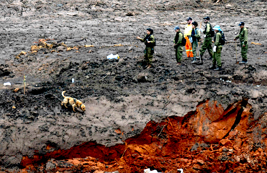 Vale says alarms didn't go off on time in Brumadinho due to 'speed' of sludge